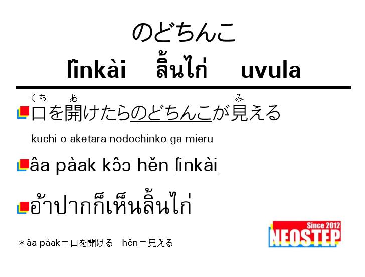 のどちんこ-ワンポイントタイ語表現