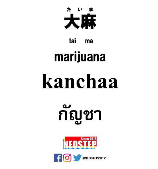 大麻-ワンポイントタイ語表現
