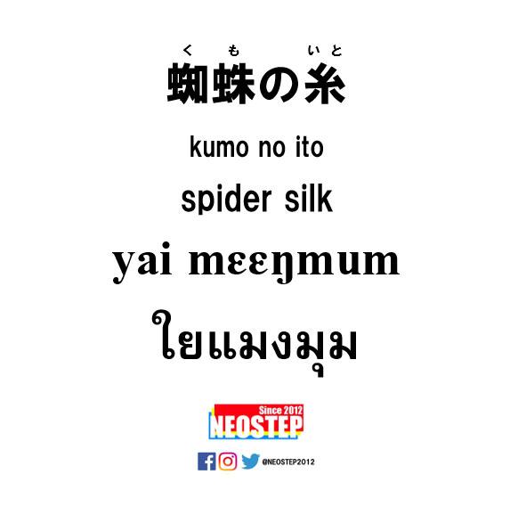 蜘蛛の糸-ワンポイントタイ語表現