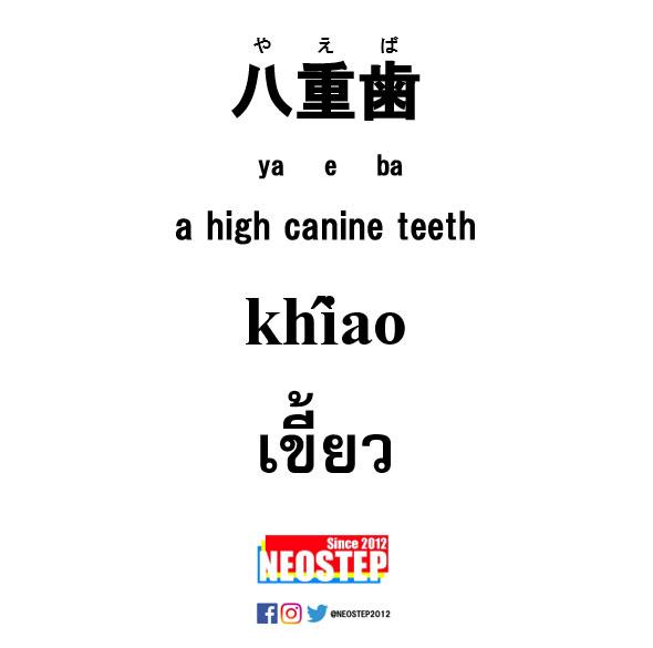 八重歯-ワンポイントタイ語表現