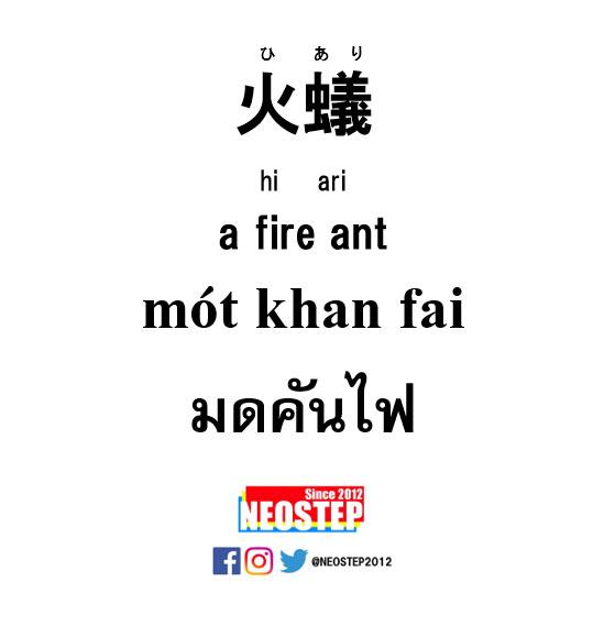 火蟻(ヒアリ)-ワンポイントタイ語表現