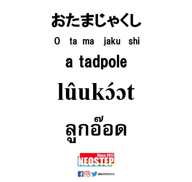 おたまじゃくし-ワンポイントタイ語表現